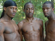 Black Hotties' Outdoor Orgy